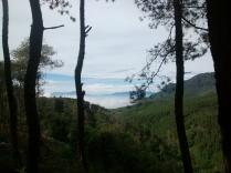 Pemandangan Desa Genteng, Tanjung Sari
